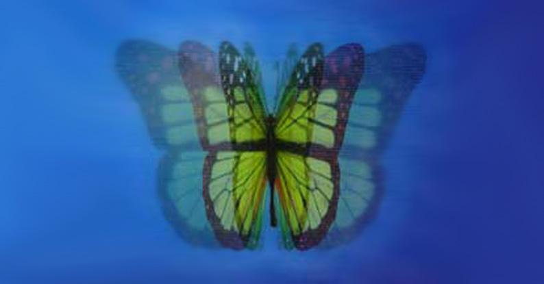 lenticular-image