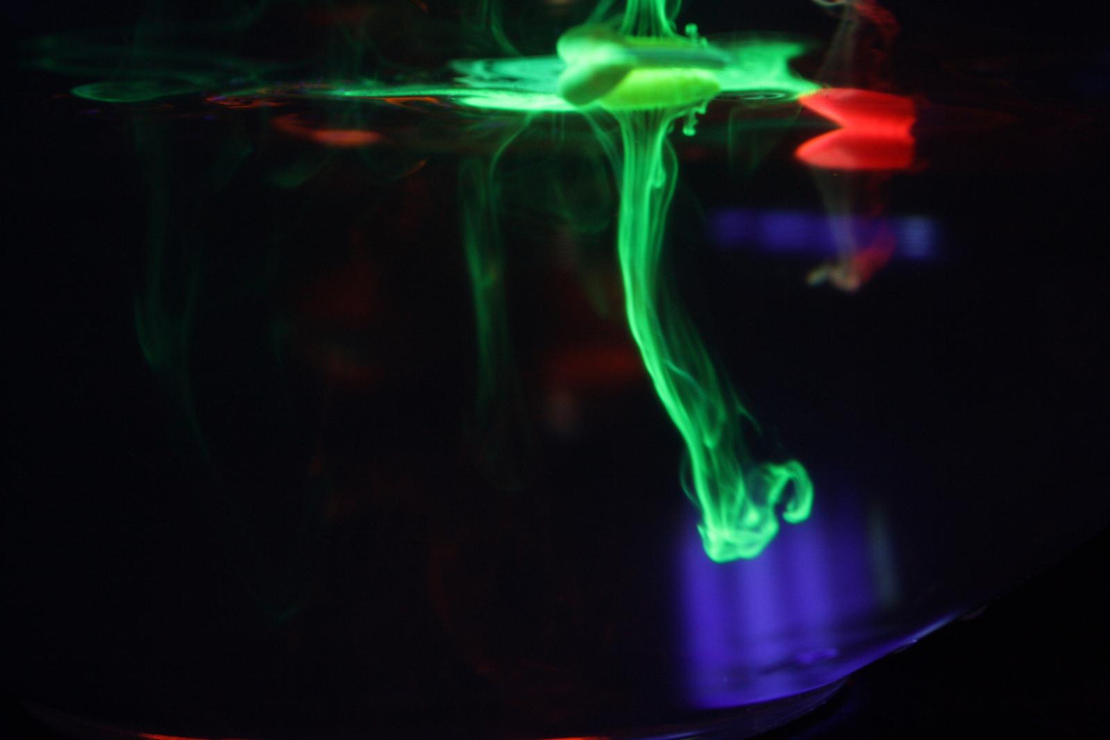 fluorescense-1151207-1599x1066
